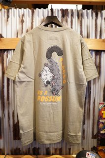 Barney Cools Possum Tee (Sage)