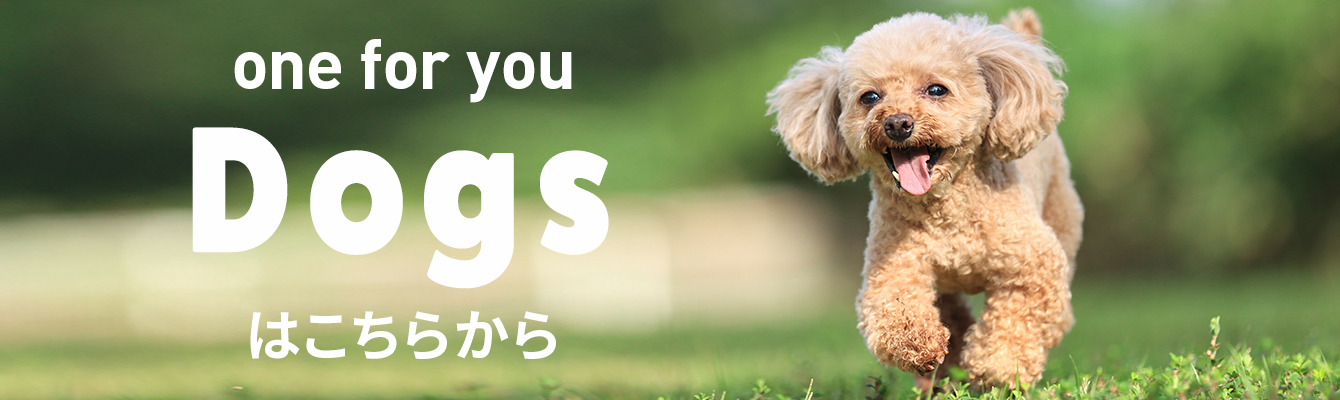 one for you Dogsはこちらから