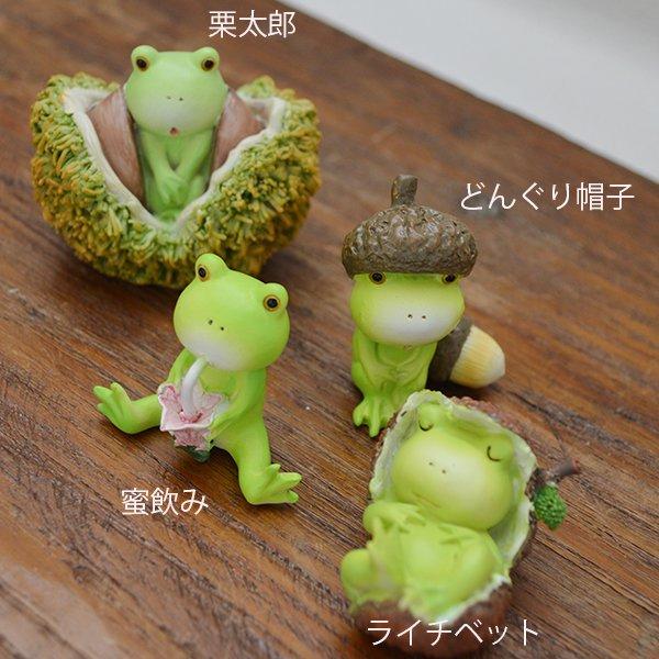 栗太郎カエルくん