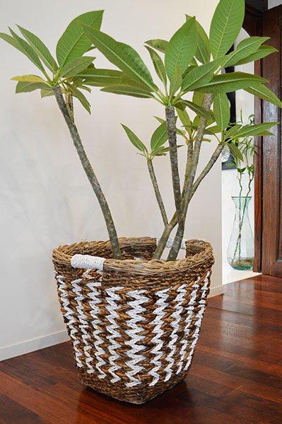 バナナリーフのグロッソバスケットLサイズ(取っ手付き)