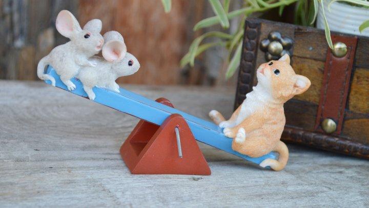 シーソーで遊ぶネコとカエル