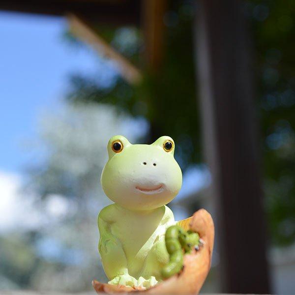 木の葉に乗るカエルとイモムシ