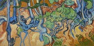 木の根と幹