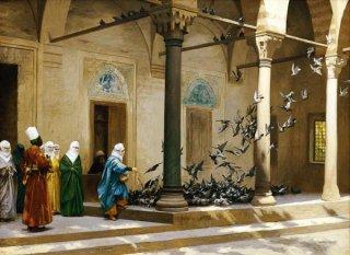 中庭で鳩に餌をやるハーレムの女達