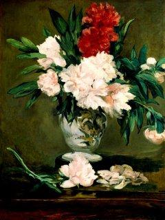 花瓶の芍薬
