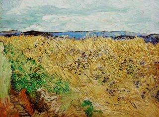 花咲く小麦畑