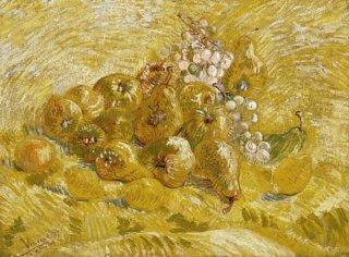 マルメロ、レモン、梨と葡萄  原画同寸