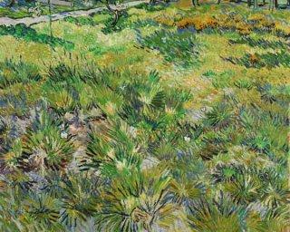 サン=ポール療養院の庭の草地
