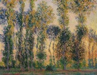 ジヴェルニーのポプラ並木、日の出