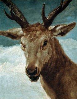 雄鹿の頭部