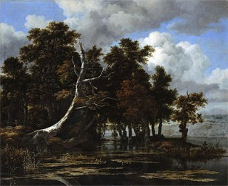 睡蓮の咲く湖の傍らの樽の木