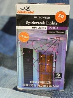 蜘蛛の巣ライト☆Spiderweb Lights☆パープル