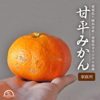 甘平 (かんぺい) (訳あり) 10Kg +1kg増量