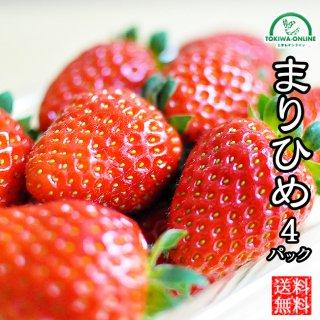 イチゴ まりひめ 4パック