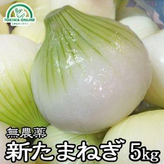新玉ねぎ(無農薬) 5Kg