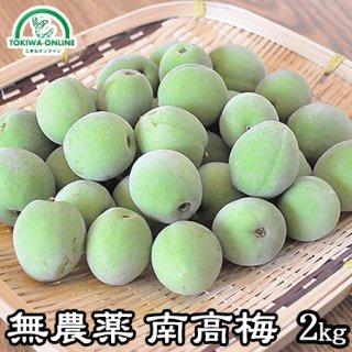 青梅 南高梅(無農薬) 2Kg