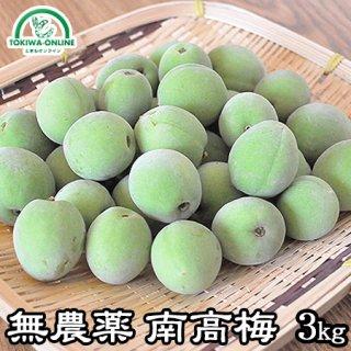 青梅 南高梅(無農薬) 3Kg