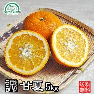 甘夏 (訳あり)5kg