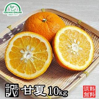 甘夏 (訳あり)10kg