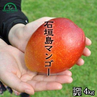 マンゴー (訳あり) 4Kg
