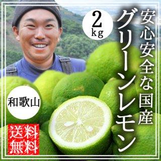 国産 無農薬 グリーンレモン 2kg