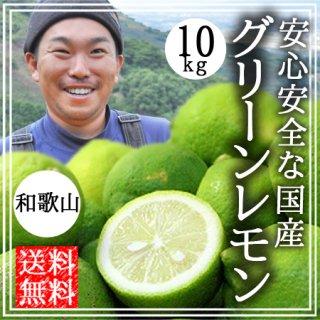 国産 無農薬 グリーンレモン 10kg