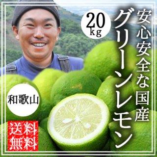 国産 無農薬 グリーンレモン 20kg