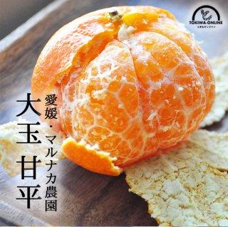 甘平 (かんぺい) 大玉 3kg