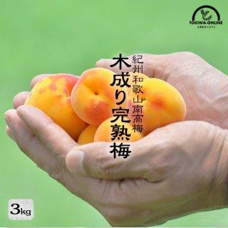 完熟梅 南高梅(無農薬) 3Kg