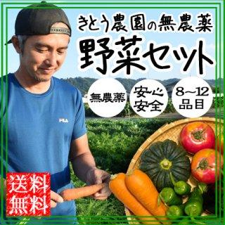 無農薬 野菜セット 8〜12品目