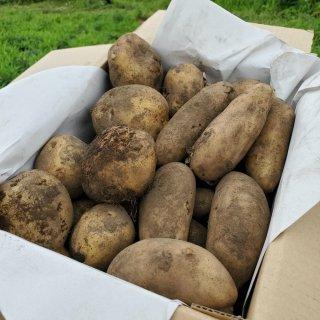 百笑 無農薬・無肥料じゃがいも 60サイズ箱セット(4~5kg)