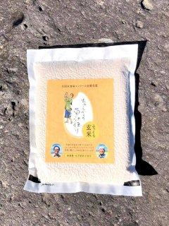 品切れ中【送料無料】ふっくら玄米 <1kg入り>