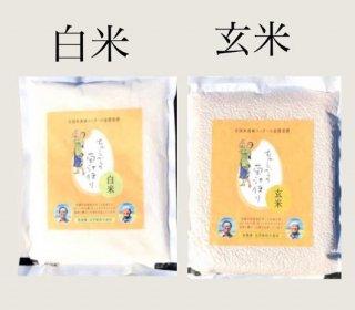 品切れ中【送料無料】白米&玄米食べ比べセット <1kgずつ>