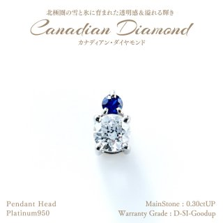 ◆カナディアンダイヤモンド◆<br>ペンダントヘッド 0.30ctUP サファイア 0.05ctUP [PT950][型番:6594060000]