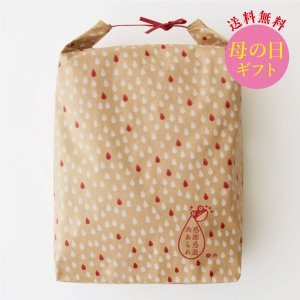 【送料無料】母の日ギフト11個大米袋セット