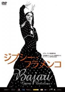 ジプシー・フラメンコ[DVD]