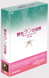野生ランの世界[DVD]