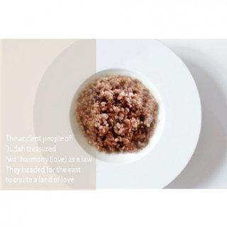 レトルトごはん 量子水で炊き上げた 熟成玄米ごはん【常温保存可】