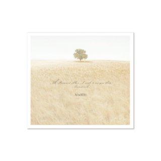 君と逢える約束の場所 サウンドトラックCD5枚セット《予約商品11月1日発売》