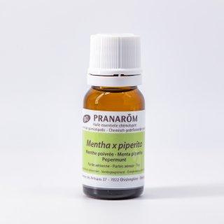 ペパーミント Mentha×piperita