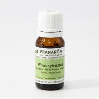アカマツ・ヨーロッパ Pinus sylvestris