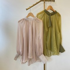 SELECT back design sheer blouse
