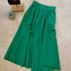 SELECT nylon color skirt