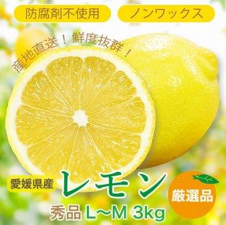 愛媛県産レモン LからM 3kg