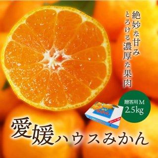 ハウスみかん【贈答用】Mサイズ 2.5kg