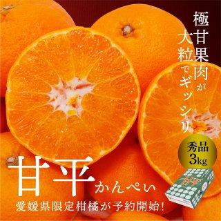 甘平 【秀品】 L~4L  3kg