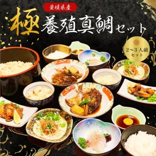 愛媛県産養殖真鯛 まるごと愛LOVE鯛 2〜3人前