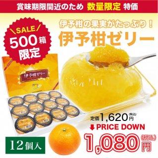 【500ケース限定】伊予柑ゼリー 155g×12個入