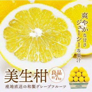 美生柑【優品】約7kg 16~22玉