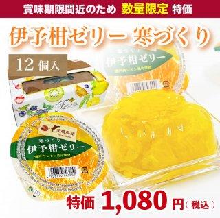 【数量限定】伊予柑ゼリー 寒づくり 155g×12個入